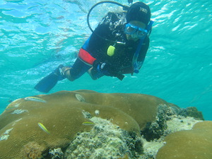 DevCon Coral Cleaning